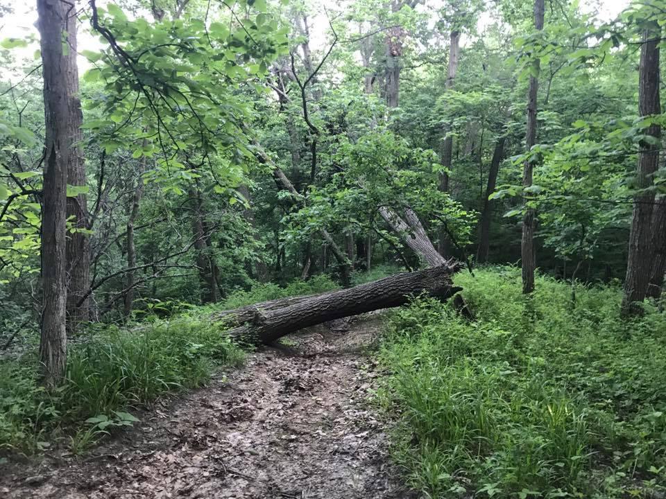 trail dead end